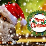 happy christmas greeting