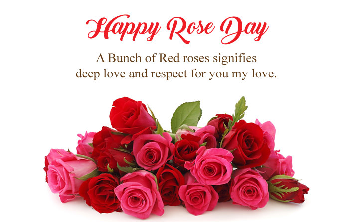 Happy-Rose-Day-Quotes-in-English