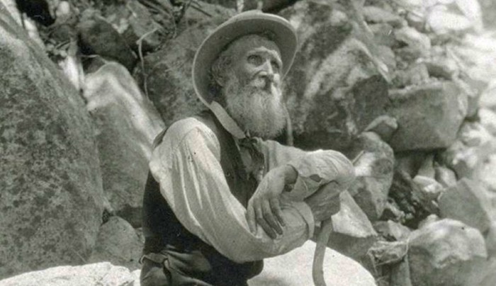 Famous John Muir Quotes – Book and Biography