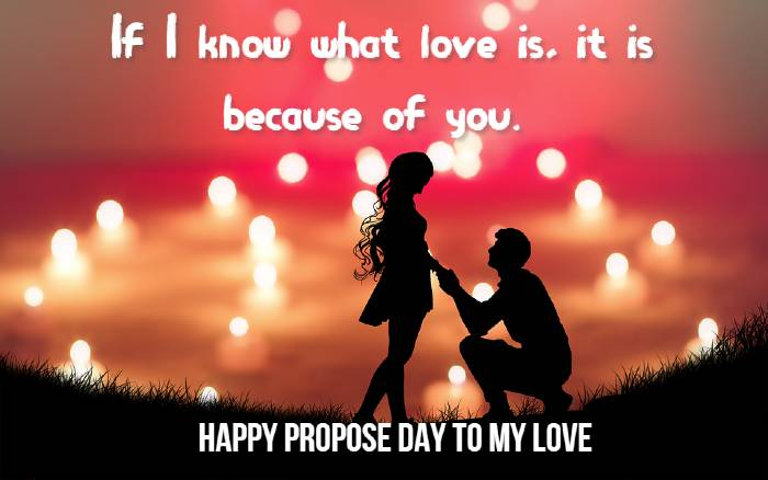 Happy Propose Day Quotes, SMS, Messages, Status and Shayari