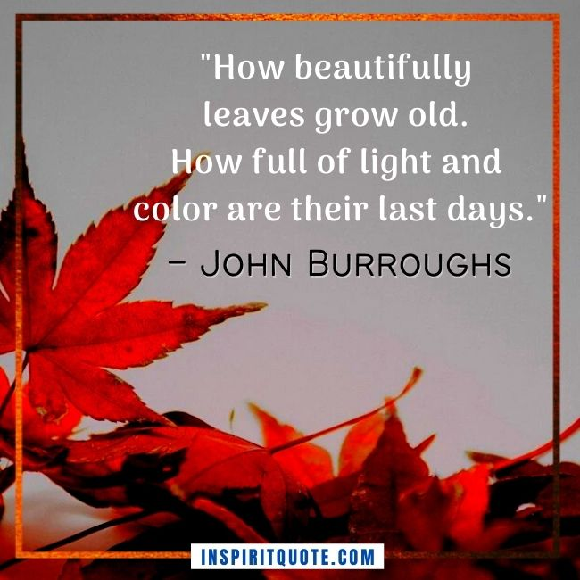 Autumn Quotes Inspirational