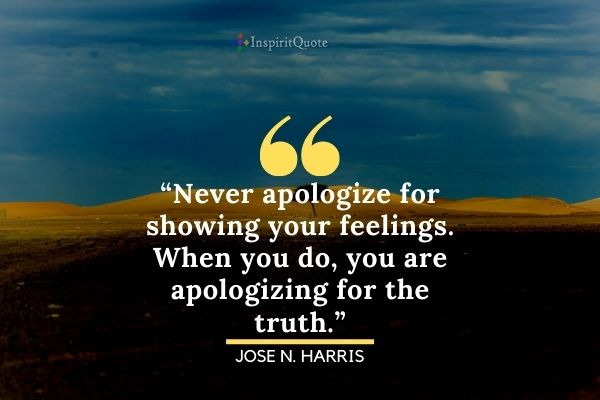 Apology Love Quotes